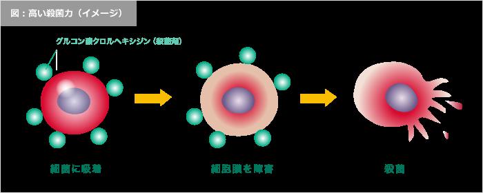 コンクールF 高い殺菌力イメージ